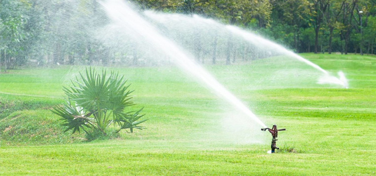 Landscape Irrigation Drainage Tips